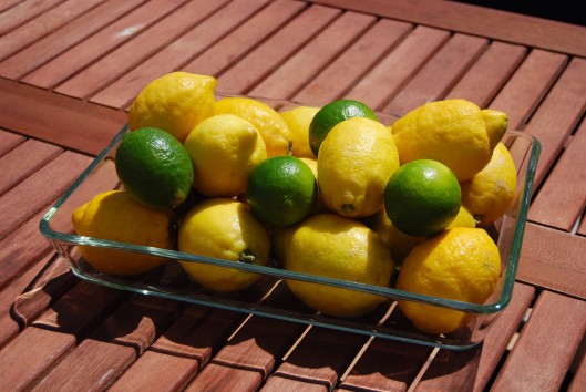 Grilled Lemonade (4)